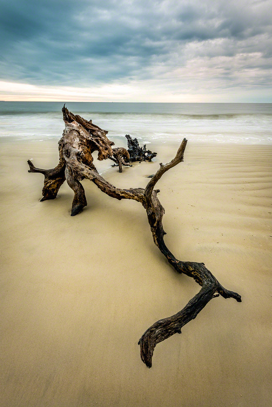 A photo of a large piece of driftwood at sunrise on Jekyll Island, GA