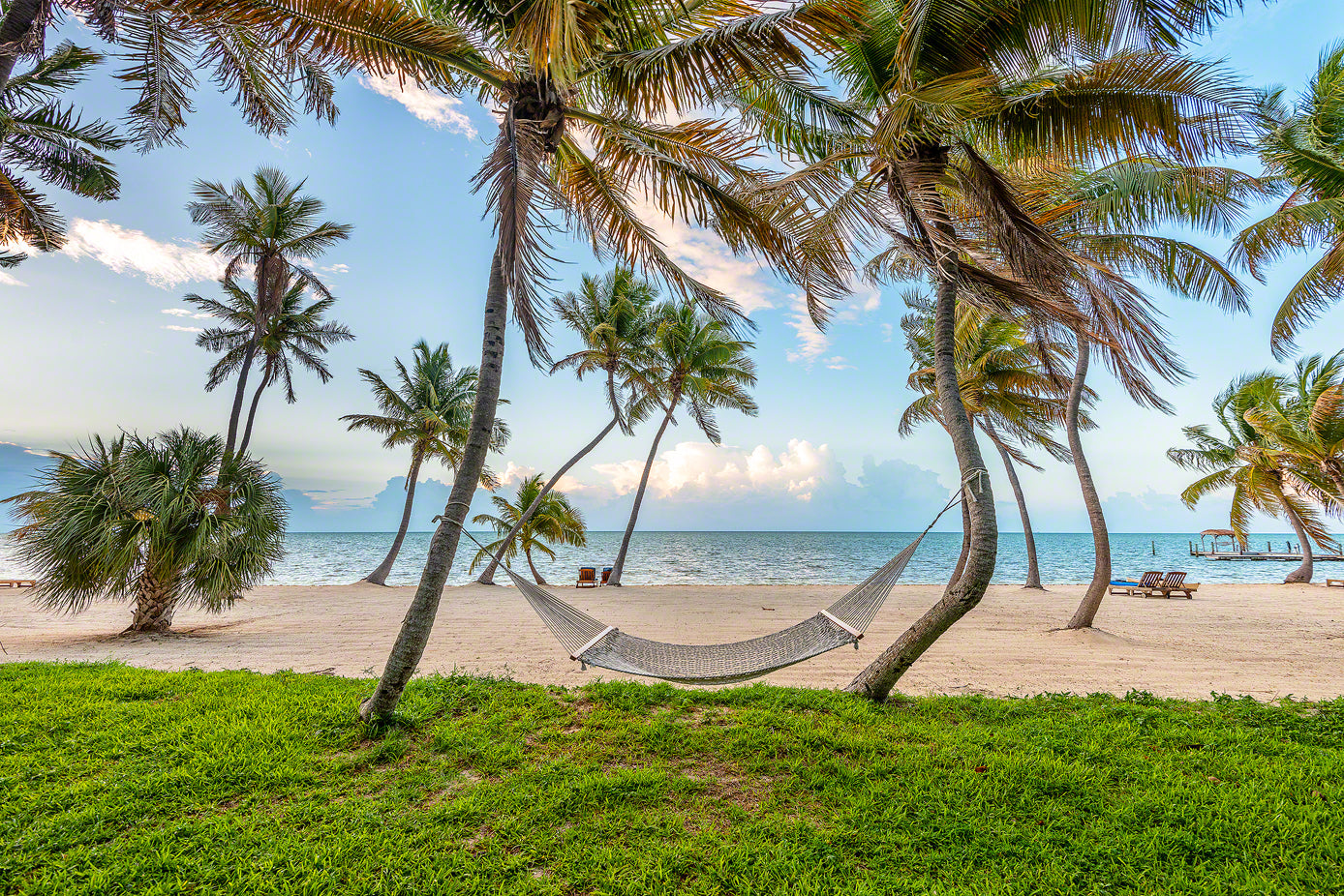A photo of a hammock in the palm trees on the beach in Islamorada, Key Florida