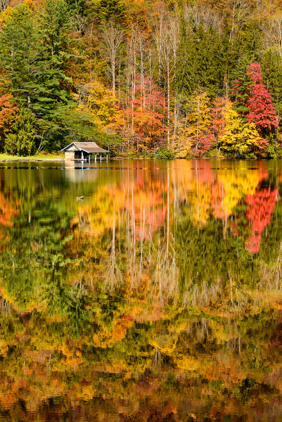 A Landscape Photograph by Fine Art Photographer Mike Ring of Fall color reflecting off of Lake Logan.