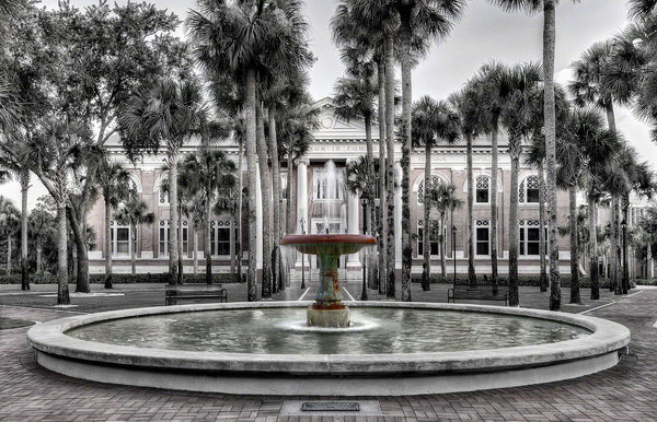 A Landscape Fine Art Photograph by Mike Ring of Palm Court fountain at Stetson College