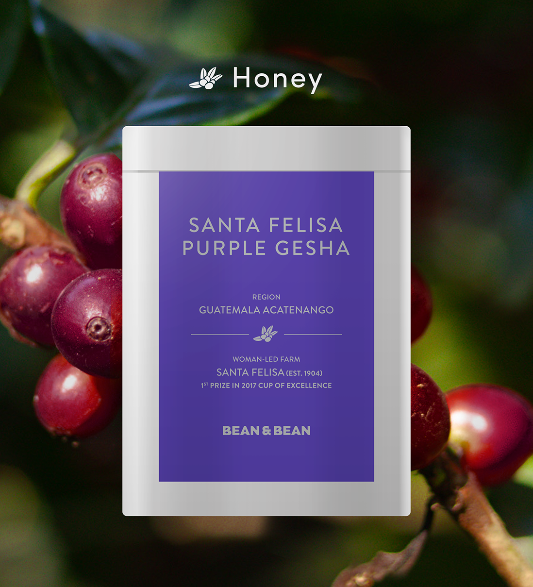 Santa Felisa Gesha Geisha Natural Process Bean & Bean Coffee Roasters New York NYC NY Roasters Acatenango Guatemala Cup of Excellence 1st Prize Honey Process