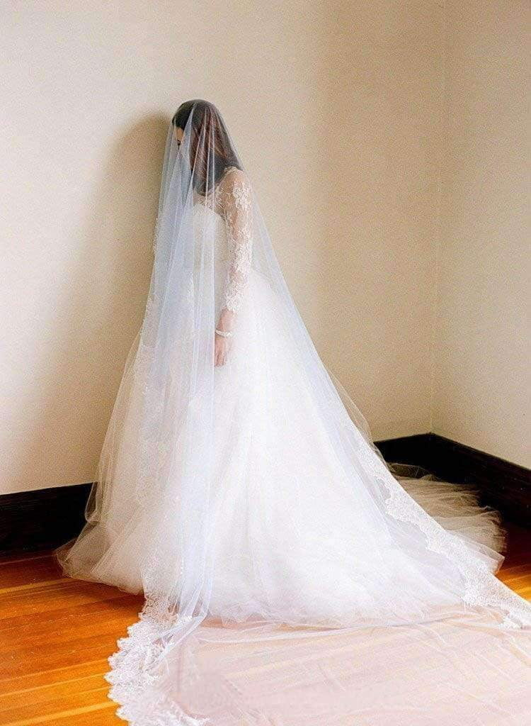 1T Tulle With Lace Cathedral Length Wedding Bridal Veil V11