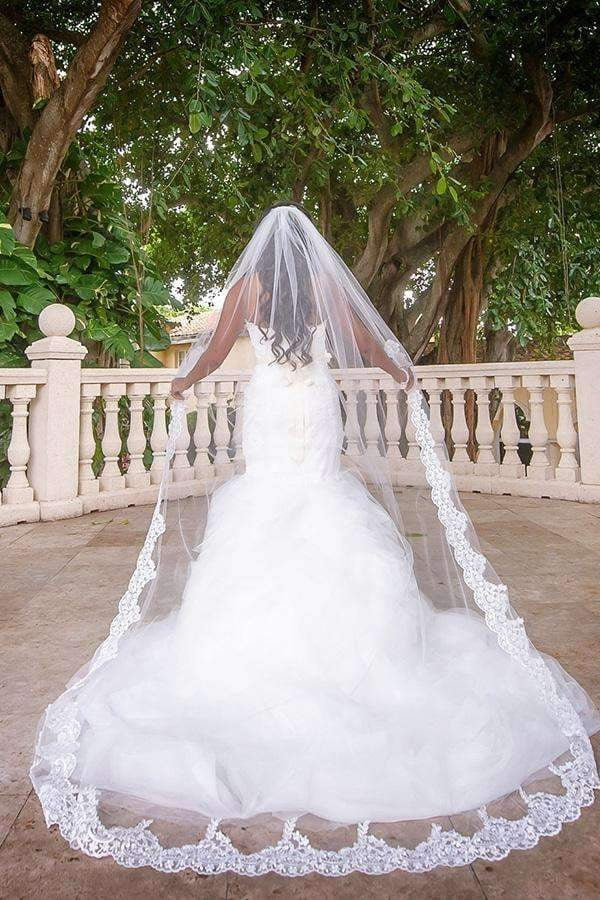 Elegant Lace Appliques Long Chapel Veils Floor Length Wedding Veils V30