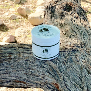 Mr Turtle Pomade
