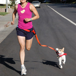 Hands Free Jogging Dog Lead