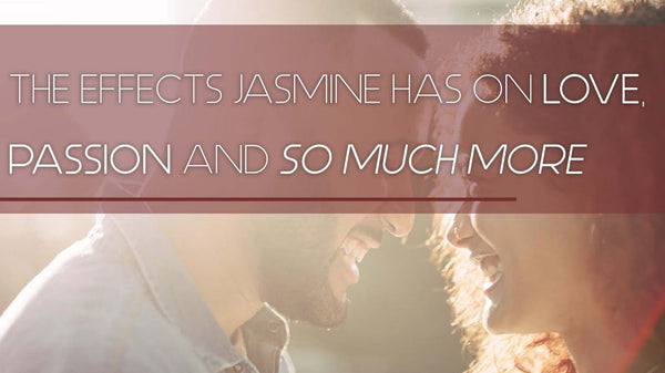 The effects Jasmine has on love, passion and so much more.