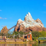 Guide to Roller Coasters and Thrill rides at Disney World