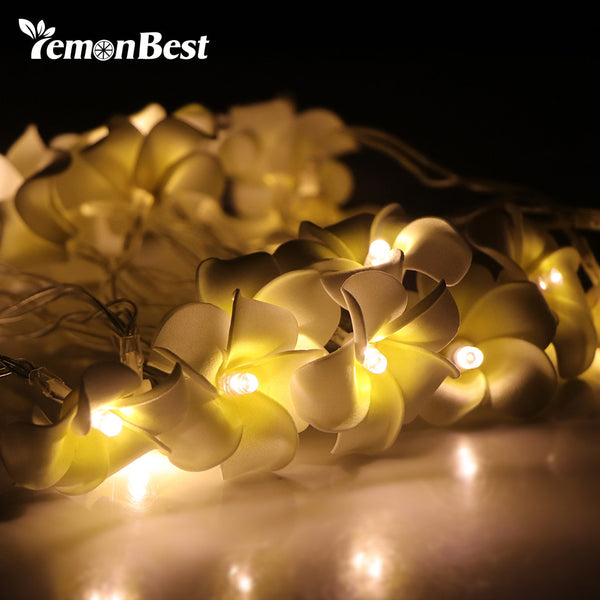 Lemonbest Battery operated LED Egg Flowers Christmas holiday String Lights for Valentine Wedding party Garland Decoration