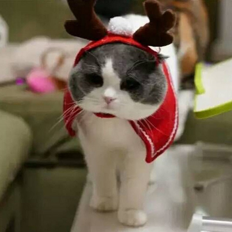 Cat Clothing Christmas Pet Cat Dog Costumes Cloaks Mantle Fashion Cat Clothes Pet Puppy Product Christmas For Cat Small Dog