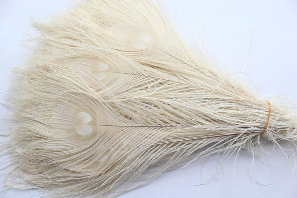 White Peacock Feathers 10-12 inches