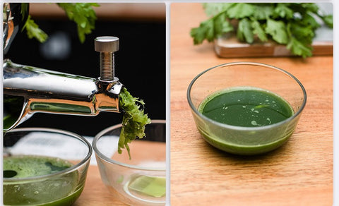 Image of Stainless Steel Hand Wheatgrass Juice Extractor