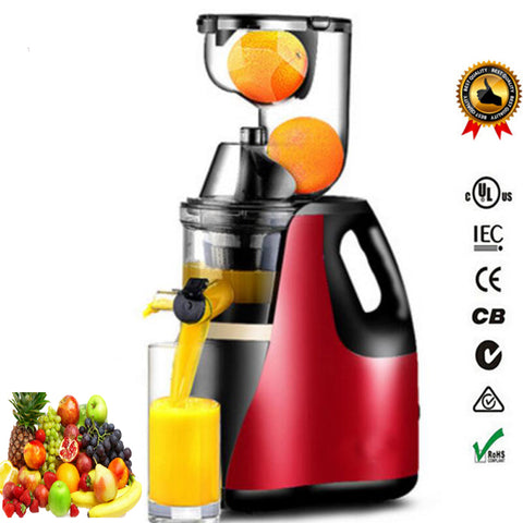 Image of Motor Technology Fruit and Vegetable Juice