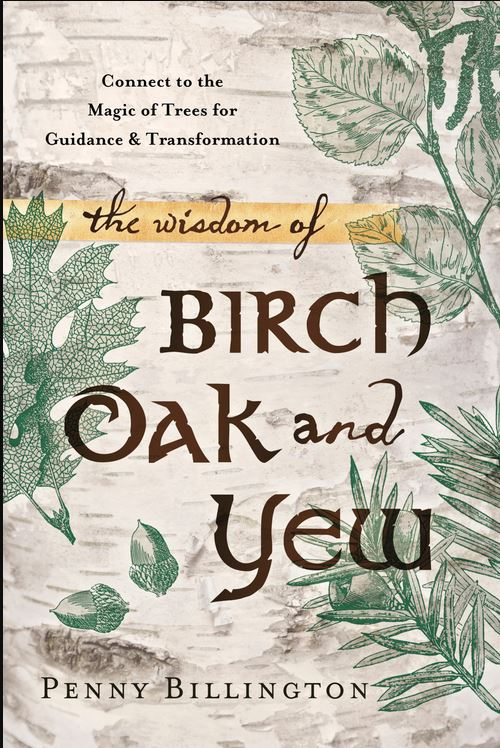 The Wisdom of Birch Oak and Yew