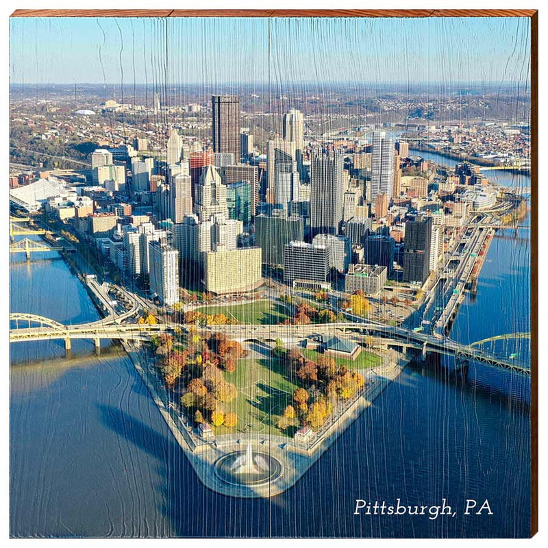 Pittsburgh Skyline from The Point-YINZERshop.com