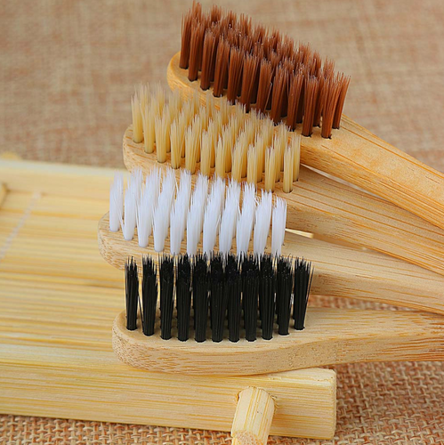 Bamboo Bristle Toothbrush w/ Wooden Handle
