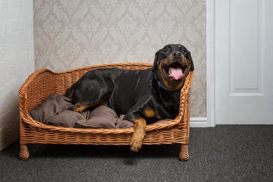Wicker Pet Bed Settee Pets Prestige Wicker