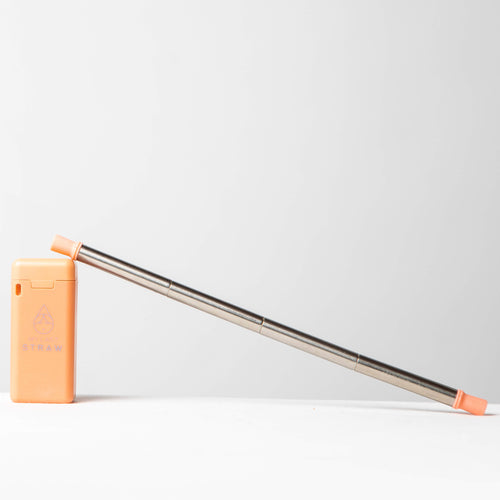 Coral Case Portable Collapsible Reusable Straw - My Last Straw
