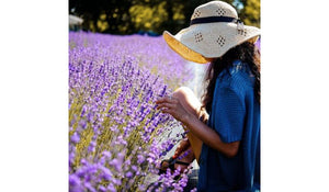 12 Reasons Why You Need Lavender to Make Your Day - And Life - Easier