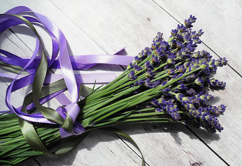 16 Remarkable Benefits Of Lavender Oil For Your Body And Mind