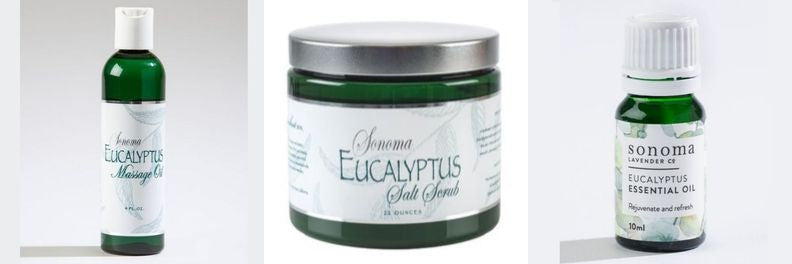 Eucalyptus massage oil, salt scrub and essential oil Sonoma