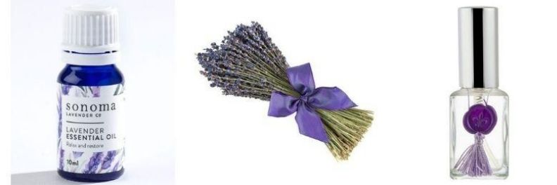sonoma lavender essential oil, dried bouquet french lavender and essential oil spray