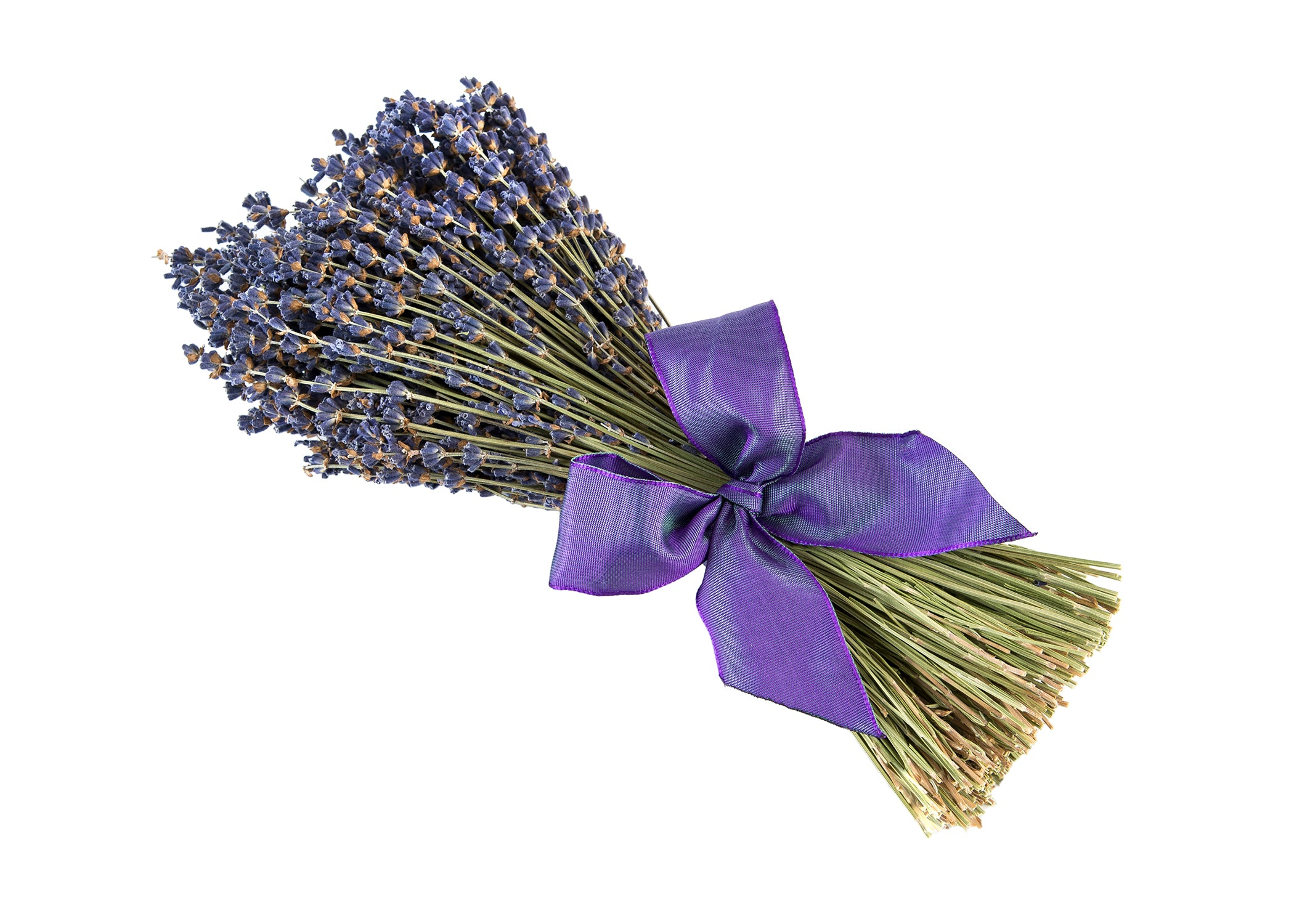 Dried Bouquet of French Lavender