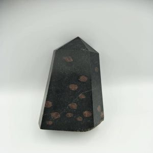 Black Tourmaline Garnet Point