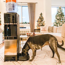 Load image into Gallery viewer, Deluxe Top Loading Water Dispenser with Pet Station