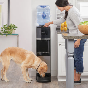 Deluxe Top Loading Water Dispenser with Pet Station - Dispenses Water for Pets