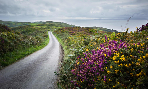 Instant Calm to the Soul: the magic of Cape Clear, Ireland