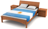 Argentina Flag Fleece Blanket 80