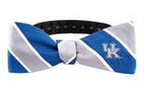 Kentucky Wildcats Woven Silk Bow Tie - NCAA