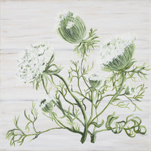 "Load image into Gallery viewer, ""Queen Anne's Lace Botanical"""