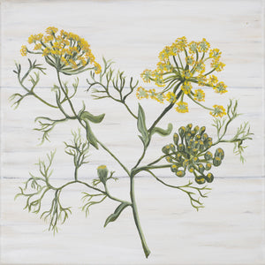 Botanical art, Fennel,  herb shelf sitter/ Free U.S. Shipping!*