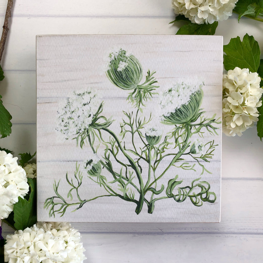 Queen Annes Lace, Botanical art, herb shelf sitter/ Free U.S. Shipping!*