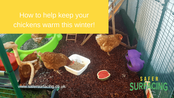Keeping your chickens warm with rubber chippings
