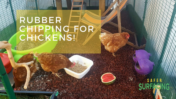 Chicken run rubber – happy feet for chickens!
