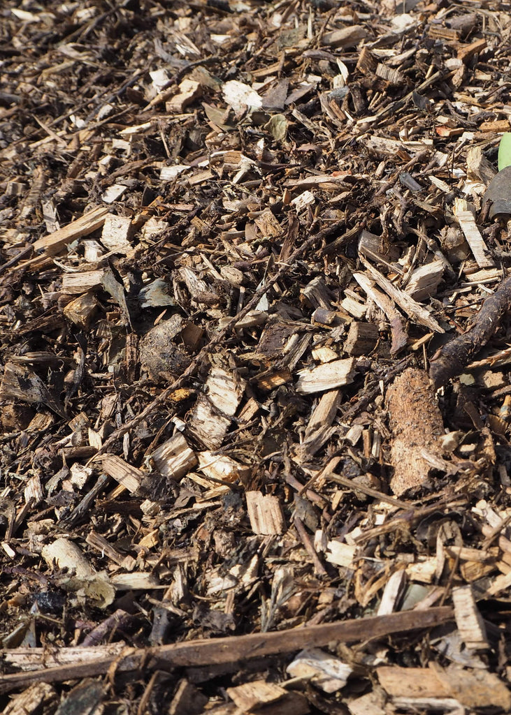 Bark Mulch - Safer Surfacing