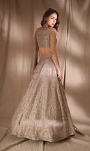 Load image into Gallery viewer, Astha Narang Grey Brown Raw Silk Lehenga - The Grand Trunk