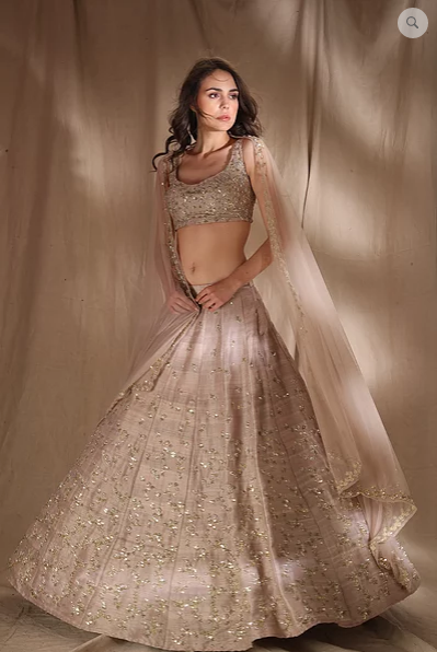 Astha Narang Grey Brown Raw Silk Lehenga - The Grand Trunk