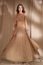 Load image into Gallery viewer, Astha Narang Pale Brown and Gold Lehenga - The Grand Trunk