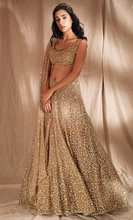 Load image into Gallery viewer, Astha Narang Gold Shimmer Lehenga - The Grand Trunk