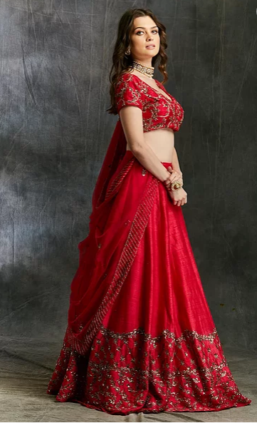 Astha Narang Dark Pink and Gold Lehenga with Choli - The Grand Trunk