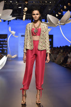 Load image into Gallery viewer, Payal Singhal Sila Jacket Set