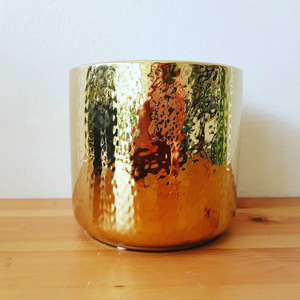 Metallic Pot