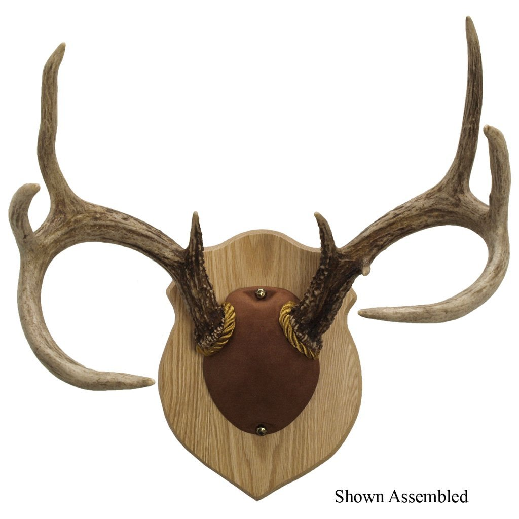 Walnut Hollow Antler Mounting Kit Solid Oak - Outdoor Solutions And Services