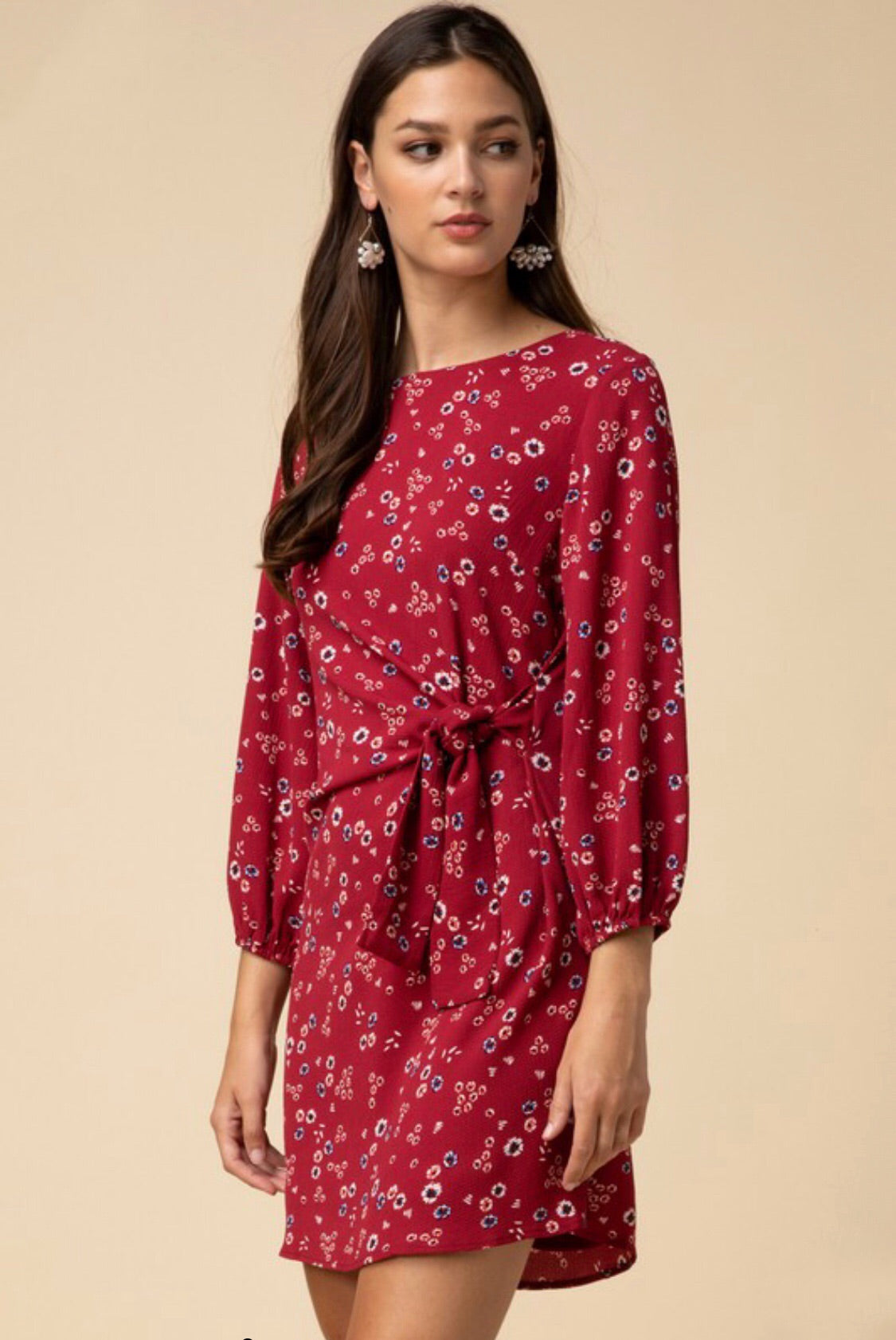 Wine Floral Print w/ Puff Sleeve Dress