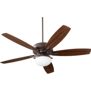 Eden 2 Light Patio Fan in Toasted Sienna Finish 18605-44