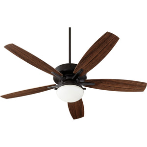 Eden 2 Light Patio Fan in Noir Finish 18605-69