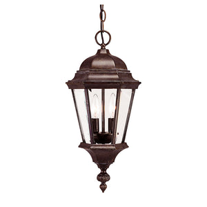 Wakefield 2 Light Outdoor Hanging Lantern in Walnut Patina Finish by Savoy House 5-1303-40